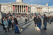 Security is tight as Police with sniffer dogs check the area for explosives before the event. Je suis Charlie/I am Charlie - A largely silent (with the occasional rendition of the Marseileus)gathering in solidarity with the march in Paris today.  Trafalgar Square, London, UK 11 Jan 2015