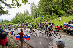 Peleton at climb Lipa and fans during 2nd Stage of 27th Tour of Slovenia 2021 cycling race between Zalec and Celje (147 km), on June 10, 2021 in Slovenia. Photo by Matic Klansek Velej / Sportida