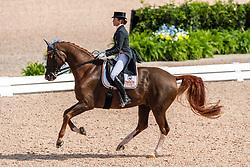 FERRER-SALAT Beatriz (ESP), Delgado<br /> Tryon - FEI World Equestrian Games™ 2018<br /> Grand Prix de Dressage Teamwertung und Einzelqualifikation<br /> 12. September 2018<br /> © www.sportfotos-lafrentz.de/Stefan Lafrentz