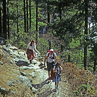 """NEPAL, HIMALAYA.  Trekkers en route to  Mount Everest Base Camp climb """"Namche Hill"""" out of Dudh Kosi canyon to Namche Bazaar, main Sherpa town."""