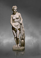 Roman statue of Aphrodite. Marble. Perge. 2nd century AD. Inv no 2014/191 . Antalya Archaeology Museum; Turkey.  Against a grey background<br /> <br /> Aphrodite is an ancient Greek goddess associated with love, beauty, pleasure, and procreation. She is identified with the planet Venus, which is named after the Roman goddess Venus, with whom Aphrodite was extensively syncretized. Aphrodite's major symbols include myrtles, roses, doves, sparrows, and swans. .<br /> <br /> If you prefer to buy from our ALAMY STOCK LIBRARY page at https://www.alamy.com/portfolio/paul-williams-funkystock/greco-roman-sculptures.html . Type -    Antalya     - into LOWER SEARCH WITHIN GALLERY box - Refine search by adding a subject, place, background colour, museum etc.<br /> <br /> Visit our ROMAN WORLD PHOTO COLLECTIONS for more photos to download or buy as wall art prints https://funkystock.photoshelter.com/gallery-collection/The-Romans-Art-Artefacts-Antiquities-Historic-Sites-Pictures-Images/C0000r2uLJJo9_s0