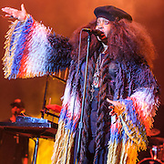 Erykah Badu @ Merriweather