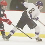 Wilmington Ice Hawks