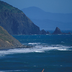 Port Orford, OR..Oregon Coast. Wind Surfing. Pacific Ocean.  Sea stacks.