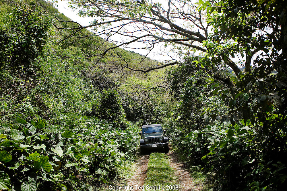 Off road driving in a Jeep at the Waipi'o valley. Kona Hawaii.