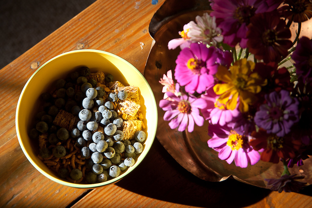 A blueberry breakfast, colored with zinnias from the garden at 33 Pine View Drive.
