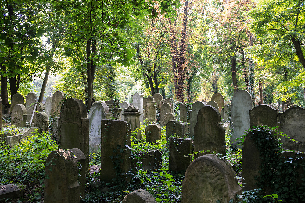 Krakow, Poland - September 2, 2016: A view on a summer day of the New Jewish Cemetery in Kraków, Poland. The cemetery was founded in 1800 and is located in the historic Jewish neighborhood of Kazimierz. During World War II the Nazis sold or otherwise used the Jewish tombstones for other purposes. Following the war many tombstones were recovered and the cemetery renovated.