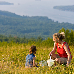 A woman and her young daughter pick blueberries on a hilltop in Alton, New Hampshire.