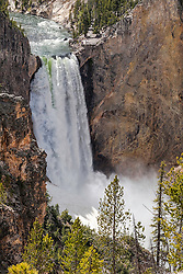 Lower Yellowstone Falls for the South Rim Trial.  Lower Yellowstone Falls is the largest waterfall in Yellowstone at 308 feet tall, it falls into the Grand Canyon of the Yellowstone River which is 1600 feet deep.  It is a grand landscape