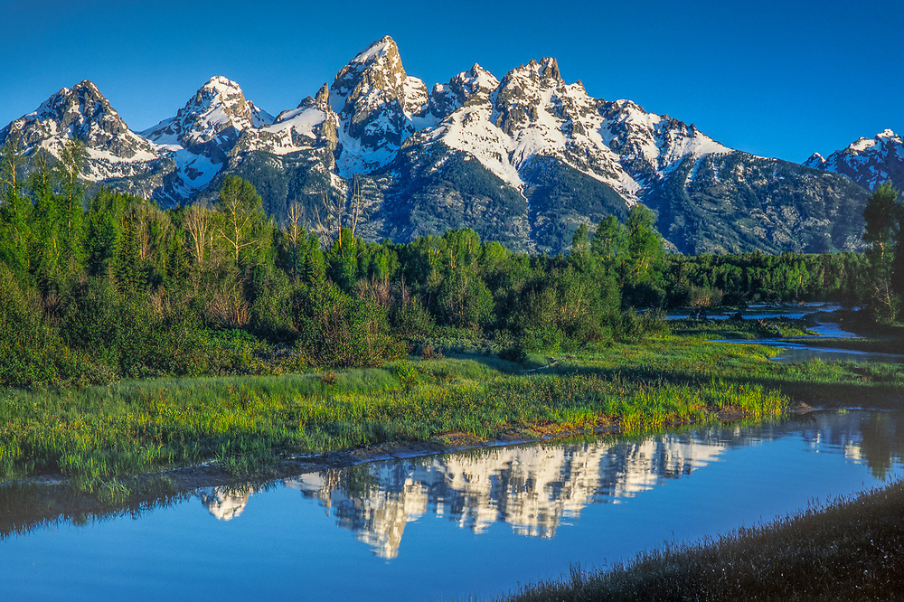 The Cathedral Group, summer, Grand Teton National Park, Wyoming, USA