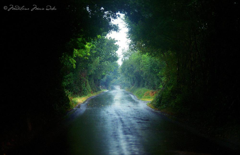 Rainy Road in Kerry, Ireland / ir002