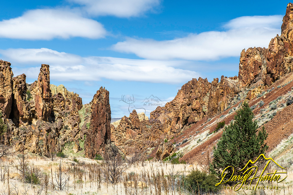 Leslie Gulch, one of the coolest places you never heard of. Leslie Gulch is in the Owyhee Country of Eastern Oregon and is an amazing place to hike because the endless landscape of pinnacles and hoodoos.