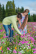 A mother and her daughter admire the field of beautiful flowers planted by the City of Kenai. PLEASE CONTACT US FOR DIGITAL DOWNLOAD AND PRICING.