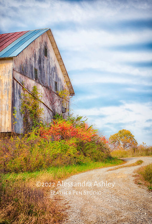 Curving gravel road leads to barn surrounded by autumn foliage, northeast Ohio.