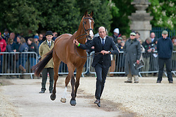 Price Tim, (NZL), Ringwood Sky Boy<br /> First Horse Inspection - Mitsubishi Motors Badminton Horse Trials <br /> Badminton 2015