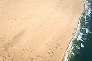Aerial view, Skeleton Coast, Northern Namibia, Southern Africa