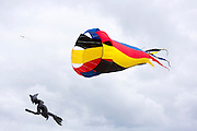 Kite festival of bright color kites and Halloween witch on broomstick in the sky above Fano Island - Fanoe - South Jutland, Denmark