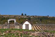 vineyard hut dezize les maranges santenay cote de beaune burgundy france