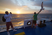 Leaving Bonifacio aboard the Moby Ferry to Sardinia at sunset. Passengers feeding seagulls.