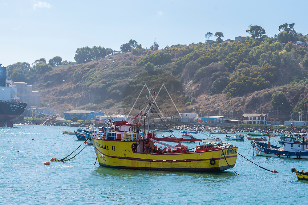 San Antonio, Chile - 12 February 2019: View of fishing boats anchored at San Antonio harbour, Chile.