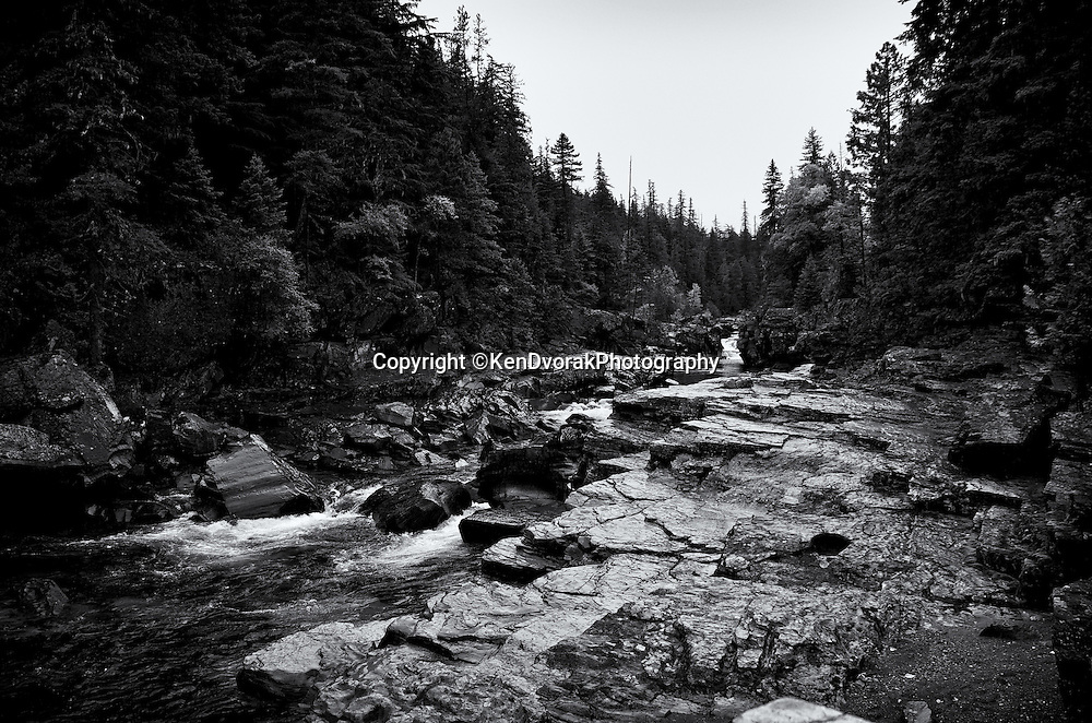 Glacier NP 2013<br /> edited 1/31/14<br /> converted to B&W 1/31/14
