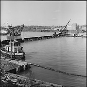 """9904-B02-10. """"Dredge pipe & pontoons holding up electric cable at Crown Mills, March 26, 1957"""" caption published in the Oregonian March 26, 1957 pg. 15 """"Tug Plucks Power Cables to aid River Dredging."""" (Cable went from Crown Mills to the Permanente Cement plant. 120mm negatives. View looking west, showing the east bank of the Willamette River.)"""