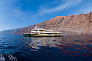 Solmar V dive vessel at Guadalupe Island in Mexico  chartered for photography expeditions focusing on Great White Sharks (Carcharodon carcharias);