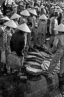 Women wearing conical hats inspecting fish available for sale at the riverside fish market in Hoi An.
