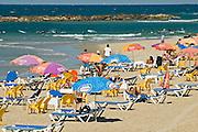A nice cool day on the Tel Aviv beach