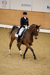 , Elmshorn Horse & Classic 28. - 30.11.2008, Lacosta 11 - Sauer, Franziska