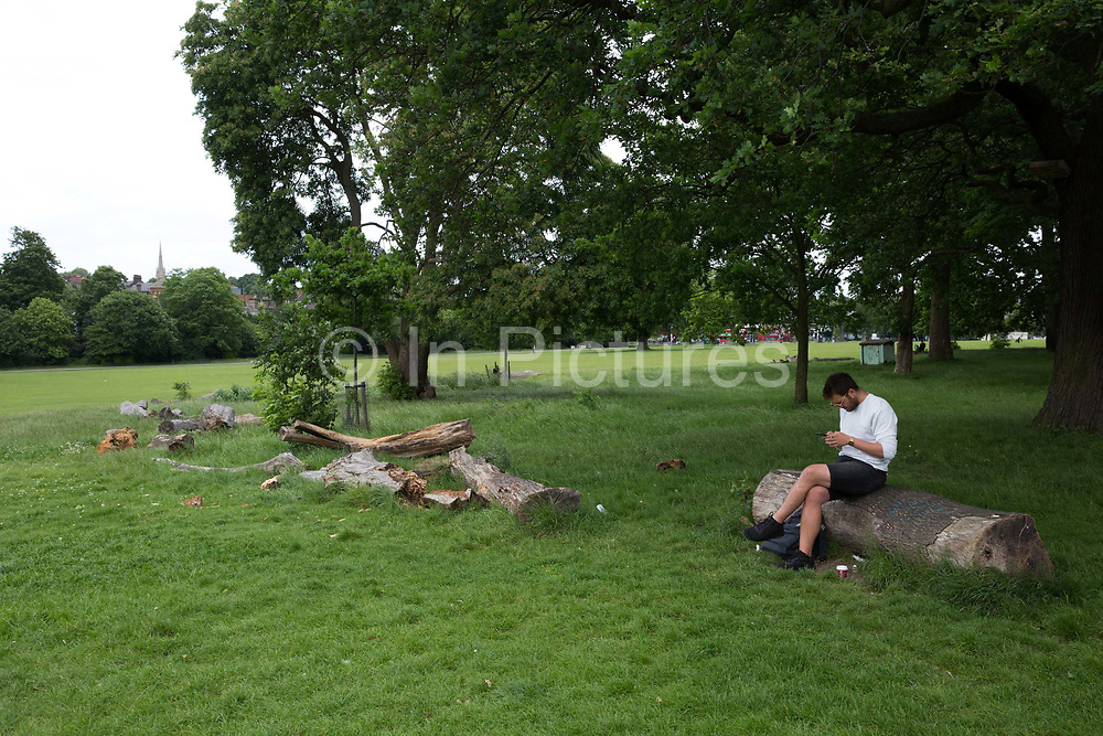 A man sitting on a tree trunk in Brockwell Park, uses his mobile phone on 06th June 2017 in London, United Kingdom. From the series Our Small World, an observation of our mobile phone obsessions