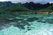 Moorea Beachcomber Hotel,<br /> Moorea, Society Islands, <br /> French Polynesia ( South Pacific Ocean )