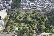 Foster Gardens, Honolulu