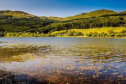 Looking across Loch Lubnaig on a sunny morning in JUne<br /> <br /> (c) Andrew Wilson   Edinburgh Elite media