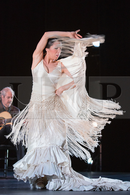 """© Licensed to London News Pictures. 28/02/2016. London, UK. Ana Morales dancing. Esperanza Fernandez """"De lo Jondo y Verdadero"""" performance at Sadler's Wells Theatre during the Flamenco Festival London 2016. With Singer Esperanza Fernandez, Dancer Ana Morales, Singer Marina Heredia and Guitarist Miguel Angel Cortes. Photo credit: Bettina Strenske/LNP"""