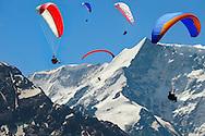 Paragliders in the Swiss Alps near the Schreckhorn  mountain above the Grindelwald valley - Swiss Alps - Switzerland