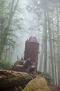 Derelict donkey engine in a forest shrouded in mist along the West Coast Trail, British Columbia, Canada.