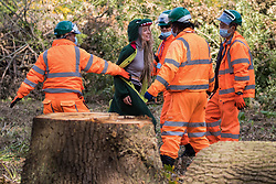 Security guards working on behalf of HS2 Ltd block an environmental activist objecting to the felling of trees in Denham Country Park for works connected to the HS2 high-speed rail link on 29 September 2020 in Denham, United Kingdom. Anti-HS2 activists based at the nearby Denham Ford Protection Camp, who are trying to prevent or delay the destruction of the woodland, contend that the area of Denham Country Park currently being felled is not indicated for felling on documentation supplied by HS2 Ltd.
