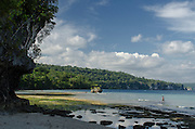 Local People low tide<br /> Biak Island<br /> West Papua<br /> Indonesia<br /> Foraging at low tide