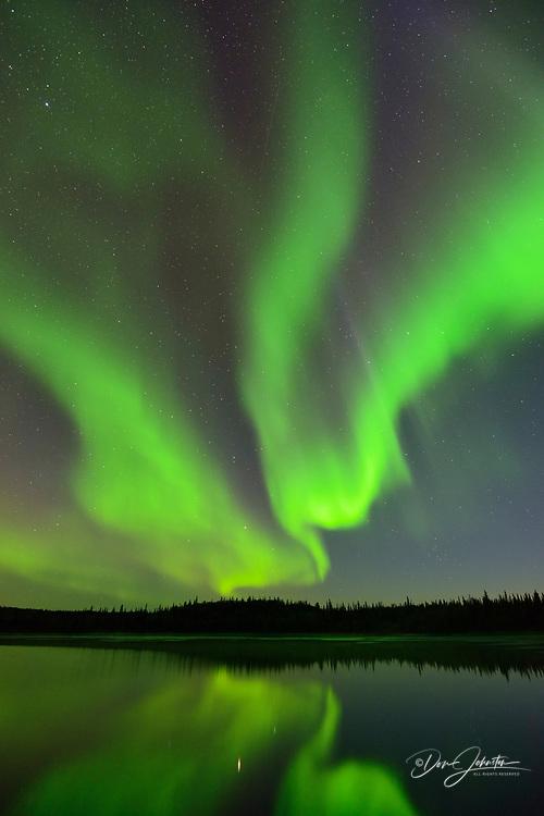 Aurora borealis over Prosperous Lake, Yellowknife, Northwest Territories, Canada