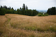"""The Grass """"Labyrinth"""" snakes through the field on the North side of the property."""