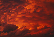 Fiery orange sunset illuminating Cumulus Mammatus<br /> clouds in association with a thunderstorm over the Norris area of Yellowstone National Park, Wyoming.