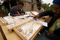 Researchers working with moth specimens outside the field lab at Mu Village.