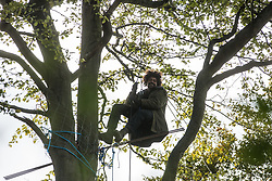An anti-HS2 tree protector hangs from a tree during evictions by National Eviction Team bailiffs working on behalf of HS2 Ltd from a wildlife protection camp in the ancient woodland which inspired Roald Dahl's Fantastic Mr Fox at Jones' Hill Wood on 1 October 2020 in Aylesbury Vale, United Kingdom. Around 40 environmental activists and local residents, some of whom living in tree houses, were present during the evictions at Jones' Hill Wood which had served as one of several protest camps set up along the route of the £106bn HS2 high-speed rail link in order to resist the controversial infrastructure project.
