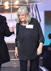 Ann Widdecombe enters the house during the Celebrity Big Brother Launch held at Elstree Studios in Borehamwood, Hertfordshire.Â