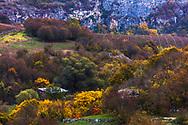 Autumnal forest of Rusenski Lom nature park