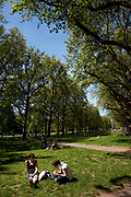 People lying on the grass and relaxing in the sun at Green Park, central London. This park, near to Buckingham Palace is one of the Royal Parks and is a huge draw for tourists and locals alike.