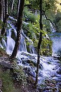 A stream cascades over a natural terrace in Plitvice Lakes National Park (Nacionalni park Plitvicka jezera, in Croatia, Europe), which was founded in 1949 and is honored by UNESCO as World Heritage Site. Waters flowing over limestone, dolomite, and chalk in this karstic landscape have, over thousands of years, deposited travertine barriers, creating natural dams, beautiful lakes and waterfalls. Warming conditions after the last Ice Age (less than 12,000 years ago) allowed the natural dams to form from tufa (calcium carbonate) and chalk depositing in layers, bound by plants. Plitvicka Jezera is a municipality of Lika-Senj County, in the Republic of Croatia.