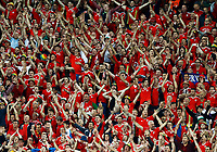Wales supporters celebrating the victory. esultanza vittoria tifosi<br /> Lille 01-07-2016 Stade Pierre Mauroy Football Euro2016 Wales - Belgium / Galles - Belgio <br /> Quarter-finals. Foto Matteo Ciambelli / Insidefoto