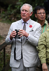 The Prince of Wales looks for orangutans during a visit to the Sarawak Semenggoh Wildlife Rehabilitation Centre in Kuching, Malaysia.